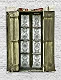 Ambesonne Shutters Decor Collection, European French Window with Antique Open Shutter Print Vintage Style Home Decor, Bedroom Living Room Dorm Wall Hanging Tapestry, Brown White