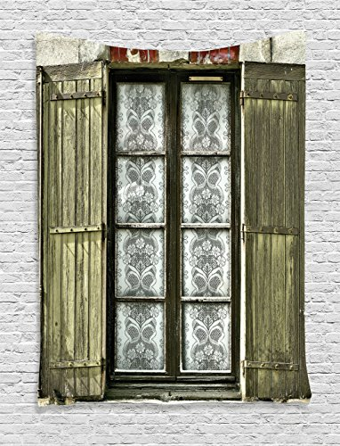 Ambesonne Shutters Decor Collection, European French Window with Antique Open Shutter Print Vintage Style Home Decor, Bedroom Living Room Dorm Wall Hanging Tapestry, Brown ()