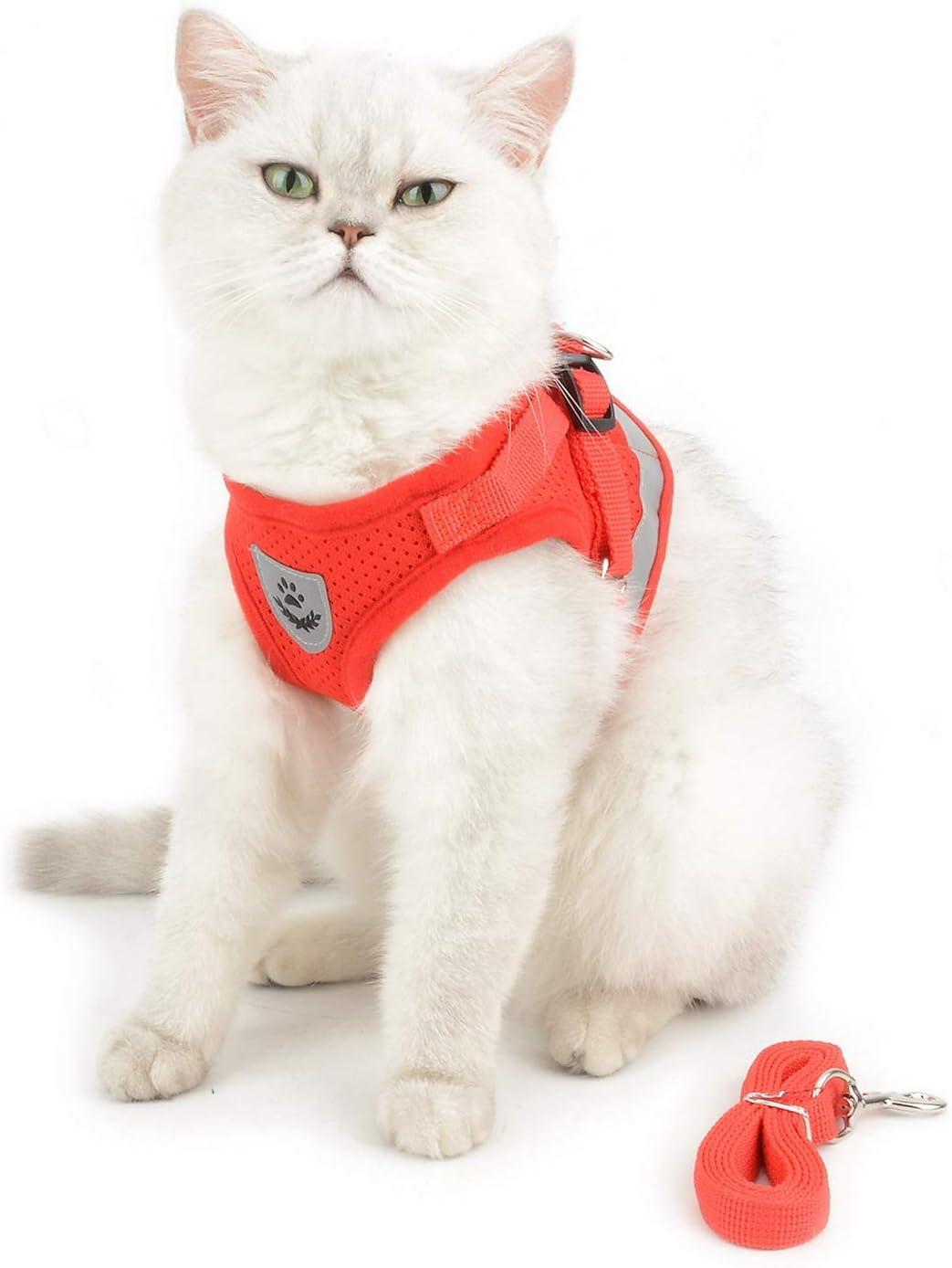 Smalllee Lucky Gilet Doux en Nylon pour Animal Domestique de Taille Petite ou Moyenne Rouge S