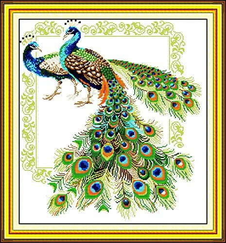 No Frame Cross Stitch Embroidery Starter Kit including 14 Count 14x20 classic reserve Aida colored threads and tools Peacock Lover