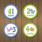 MyLilSprouts Dinosaurs Monthly Baby Boy & Girl Newborn MileStone Round Easy Peel Stickers 1 - 12 Months Set - Baby Shower Gift (Style 13)