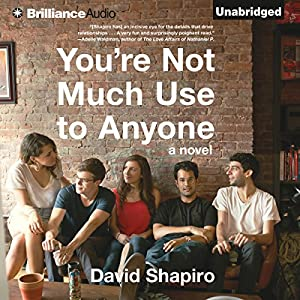 You're Not Much Use to Anyone Audiobook