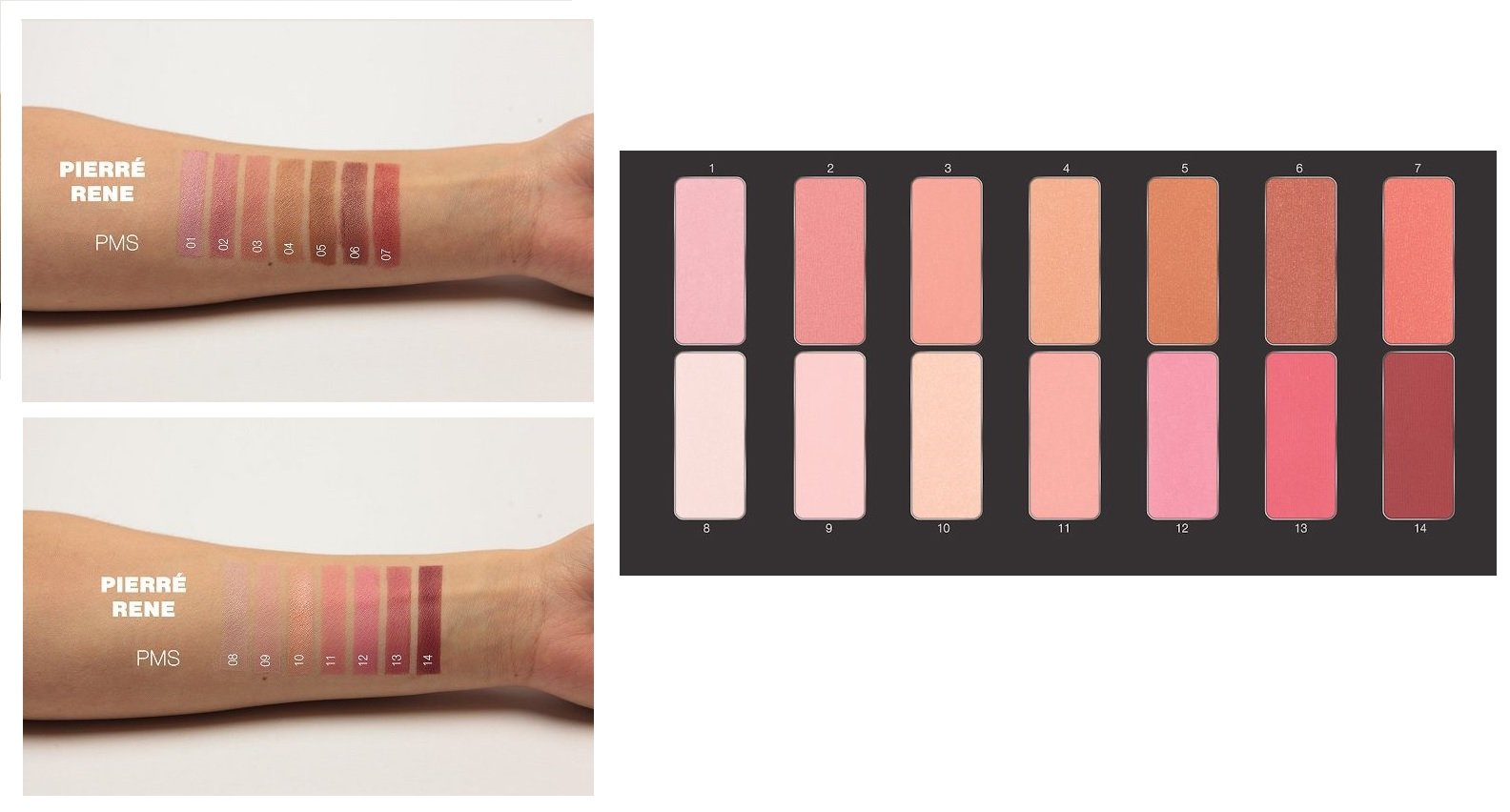Pierre Rene Professional Make-Up - Complete Luxury Blush Palette 14 high pigmented matte and shimmery blushes