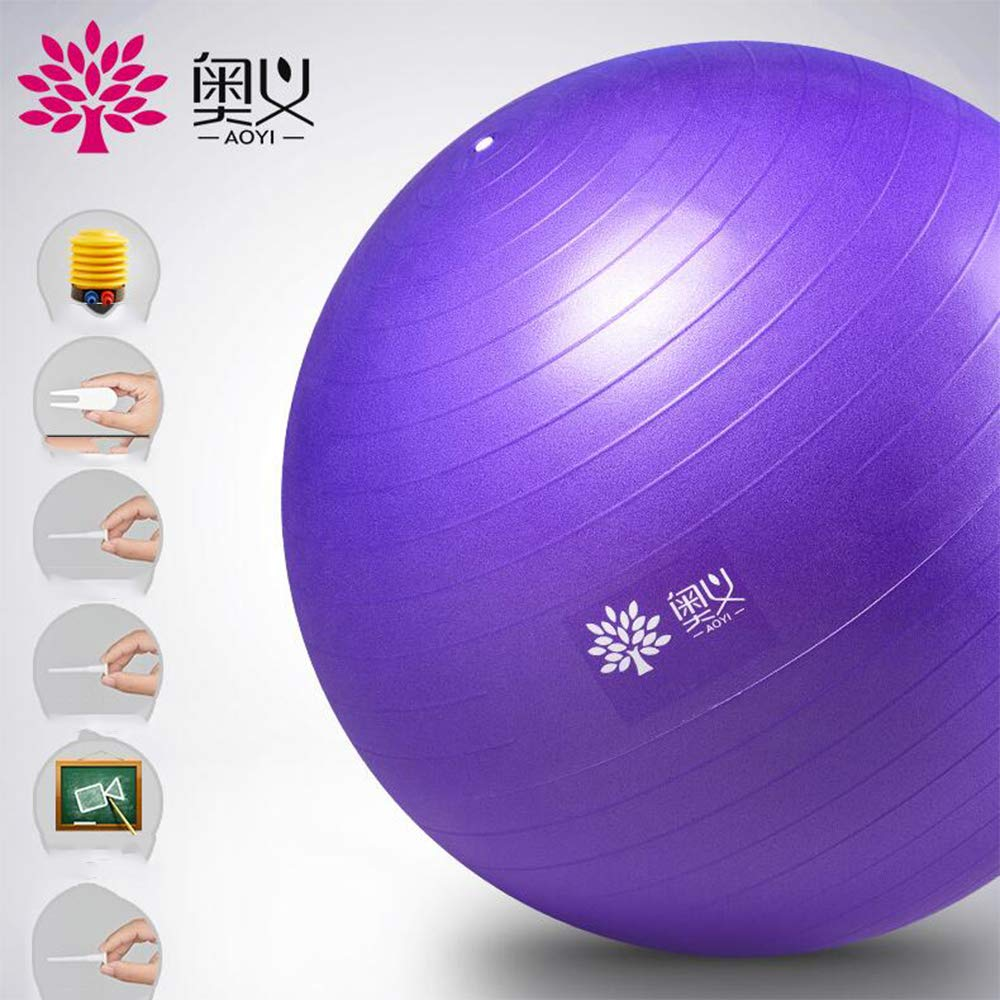 Sports Yoga Ball, Ultra-Thick Stable Ball Chair, Professional-Grade Explosion-Proof Anti-Skid Balance, Fitness and Physical Therapy, Pilling with air pump-65 by FRHLH