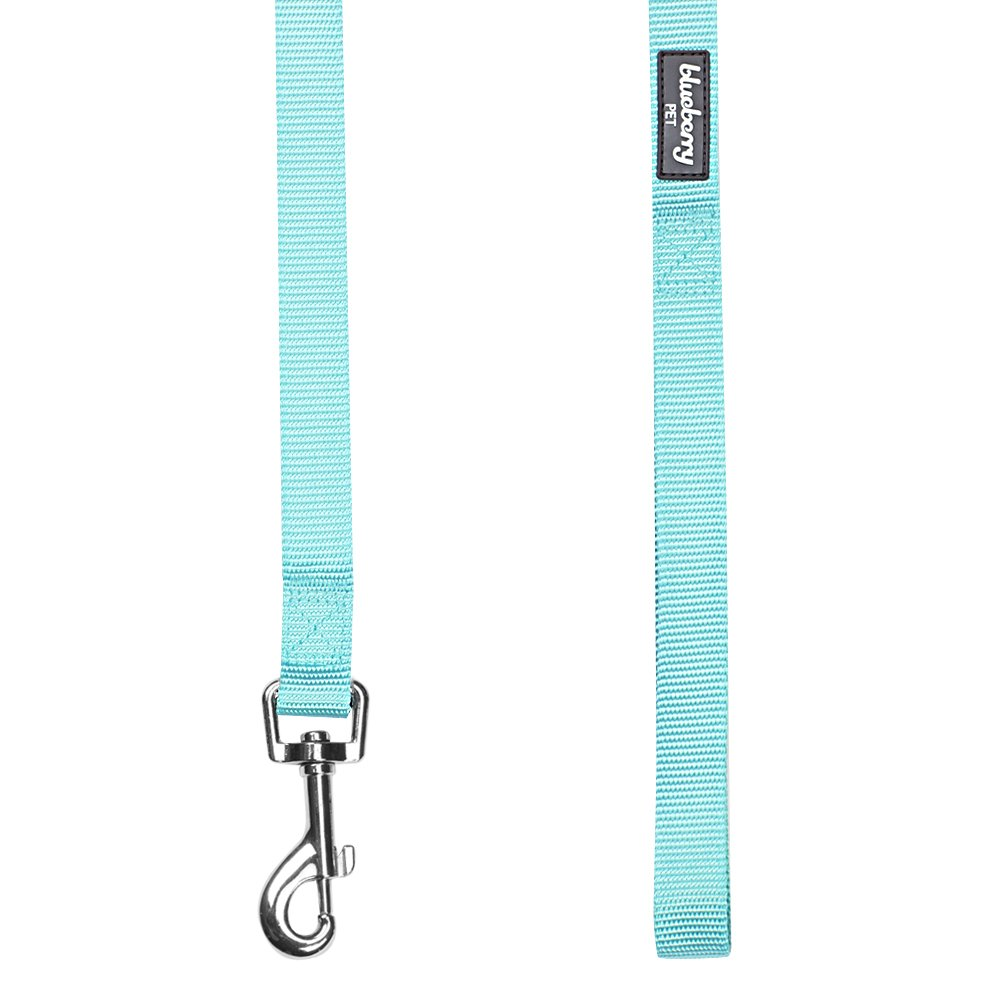 Blueberry Pet 19 Colors Durable Classic Dog Leash 5 ft x 5/8'', Mint Blue, Small, Basic Nylon Leashes for Dogs by Blueberry Pet (Image #4)