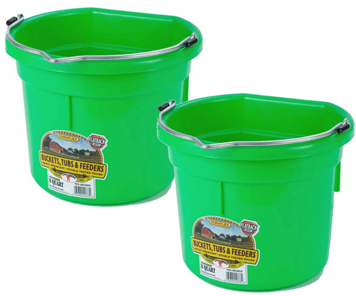 Duraflex 8 Quart Flat Back Bucket Tubs and Feeders 2 Pcs (Lime Green)