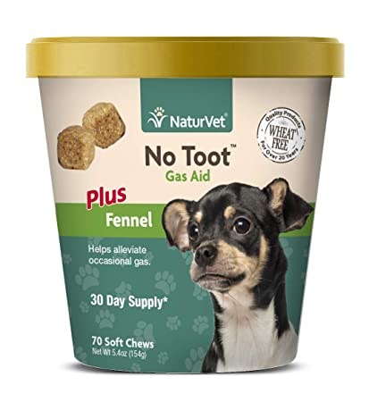 Enjoyable Naturvet No Toot Gas Aid For Dogs Plus Fennel 70 Soft Chews Alleviates Intestinal Gas Helps Reduce Stool Urine Odors 30 Day Supply Andrewgaddart Wooden Chair Designs For Living Room Andrewgaddartcom