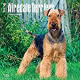 Airedale Terrier Dog Wall Calendar 2017 {jg} Best Holiday Gift Ideas - Great for mom, dad, sister, brother, grandparents, , grandchildren, grandma, gay, lgbtq.