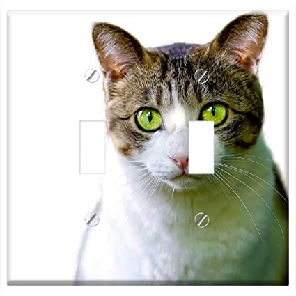 Switch Plate Double Toggle - Cat Isolated Feline Render Png Pet Animal Gata - - Amazon.com