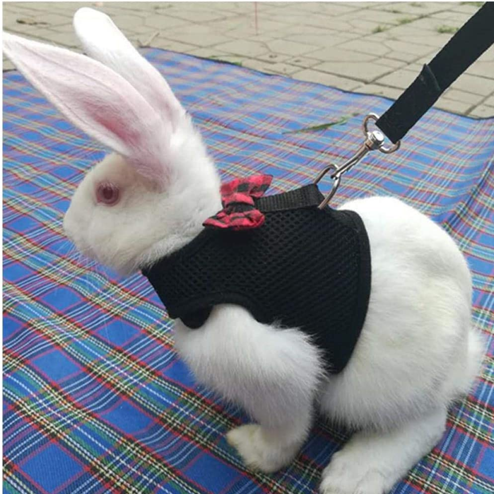 Conejos Hamster Chaleco arnés con Correa de Malla Conejito Banda de Pecho Arneses Ferret Guinea Pig Peque?os Animales de compa?ía Accesorios S M L