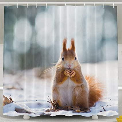 JJUSTING Squirrel Shower Curtain Waterproof Polyester Fabric Sets Decoration Decor 60x72 Inch For