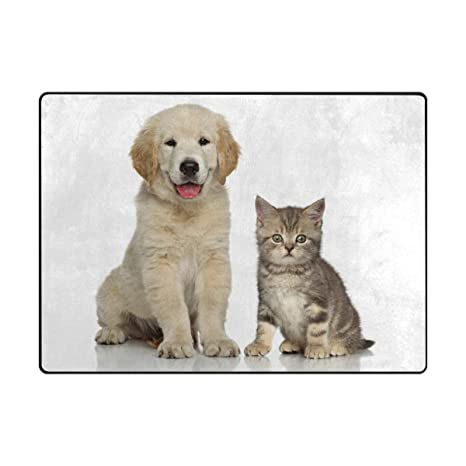 Amazon Com Doormat Outdoor Mats Entrance Waterproof Rugs Dog Cat