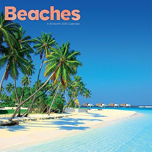 2019 Beaches Mini Calendar
