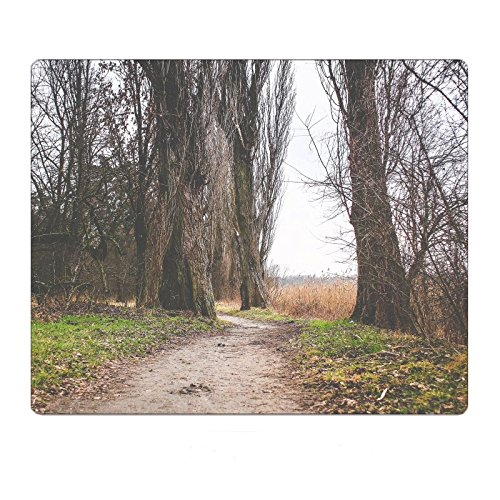 Lakeside Path - Lakeside Autumn/Winter Path Mousepad Gaming Mouse Pad 9.8 11.8 inch