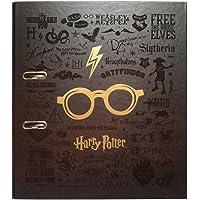 Grupo Erik - Archivador de palanca Gafas, Harry Potter (28x32 cm)