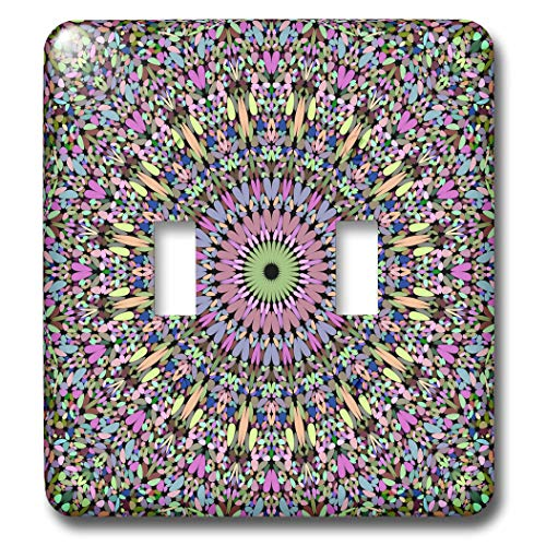 3dRose David Zydd - Floral Mandalas - Geometric Pastel Gravel Mandala - Light Switch Covers - double toggle switch (lsp_301930_2)