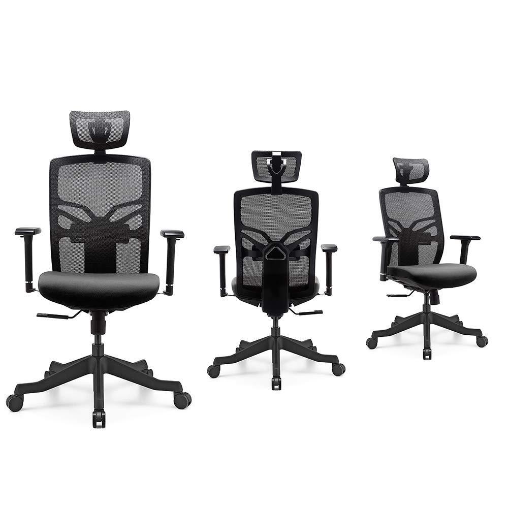 HESSEN High Back Office Chair Ergonomic With Lumbar