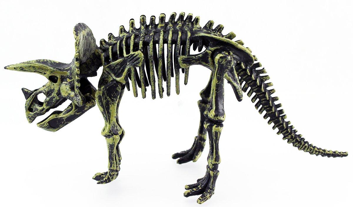 Dinosaurier Skelett Ausmalbilder : Ungew Hnlich Dinosaurier Skelett Malvorlagen Fotos Malvorlagen Von