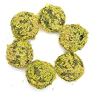 Byher Natural Preserved Moss Hanging Ball Vase Bowl Filler for Garden, Wedding, Party Decoration 4