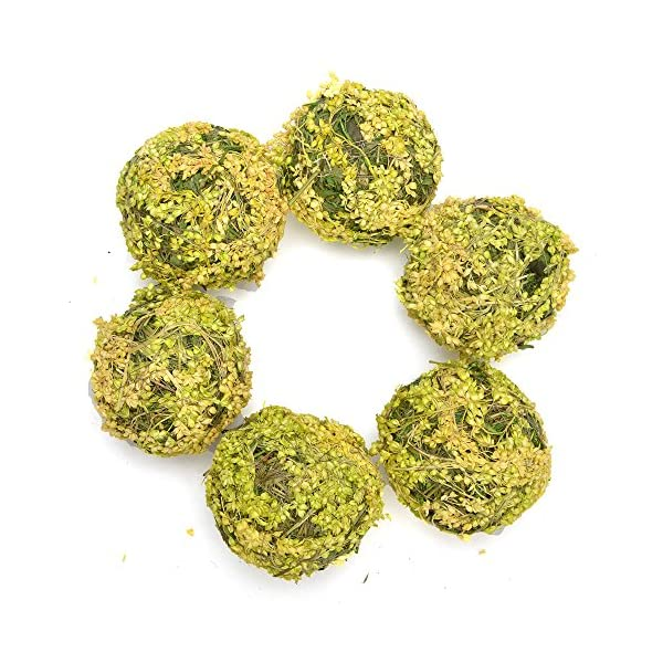 Byher-Natural-Preserved-Moss-Hanging-Ball-Vase-Bowl-Filler-for-Garden-Wedding-Party-Decoration