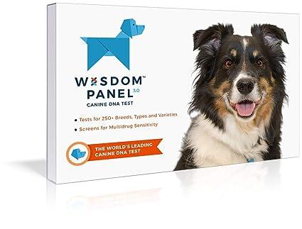 Amazon.com  Wisdom Panel 3.0 Breed Identification Dog DNA Test Kit ... d8e4f3a361f