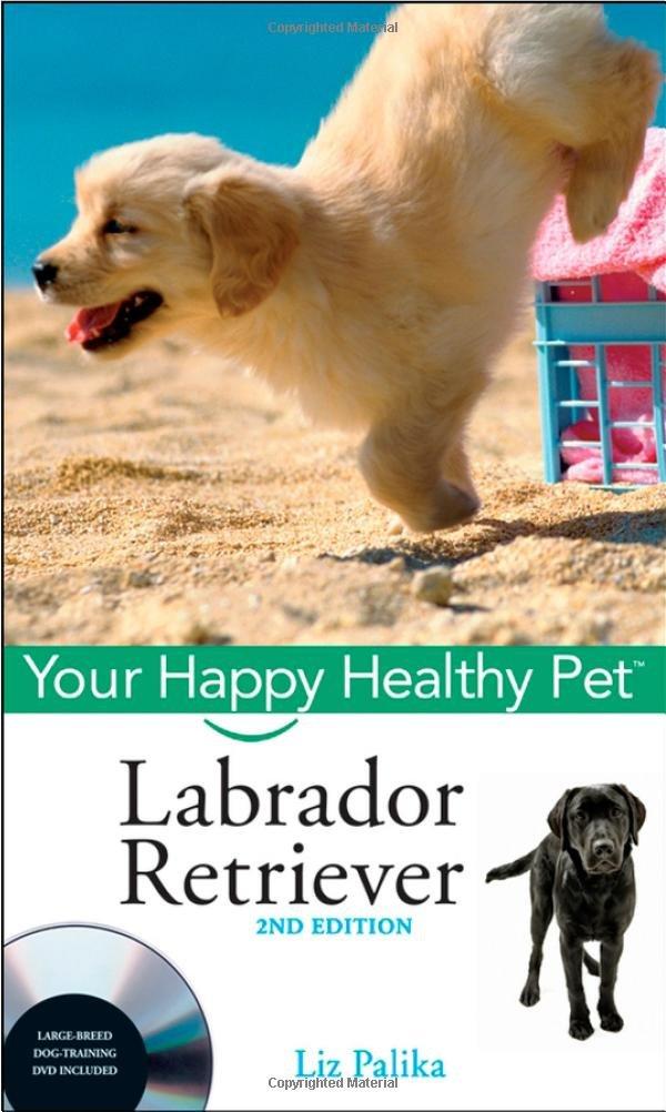 Read Online Labrador Retriever, with DVD: Your Happy Healthy Pet pdf