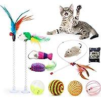 Fansport Kattleksaker, 11 st interaktiv kattleksakskit för inomhus med fjäderstav, klockboll kattmynta leksak, sisal…