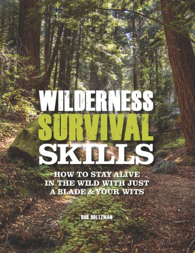 Read Online Wilderness Survival Skills: How to Survive in the Wild with just a Blade and Your Wits pdf epub