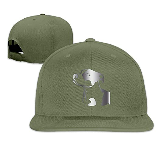 c6e309a4ad683 Image Unavailable. Image not available for. Color  DluHi Pitbull Platinum  Style Baseball Snapback Cap