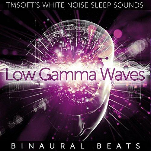Binaural Beats Gamma Waves Descargar Mp3 - grapuscolo cf
