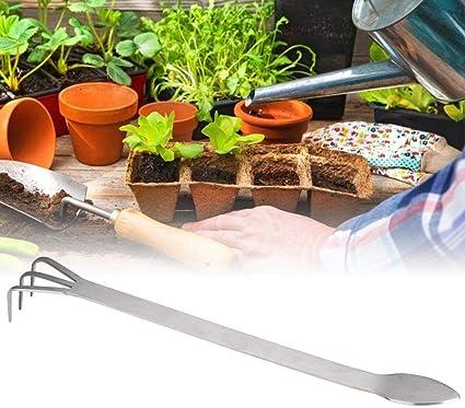 Amazon Com Multifunction 2 In 1 Anti Slip Bonsai Rake Bonsai Spatula Stainless Steel Bonsai Beginner Accessory Bonsai Tool For Plant Pot Bonsai Garden Outdoor