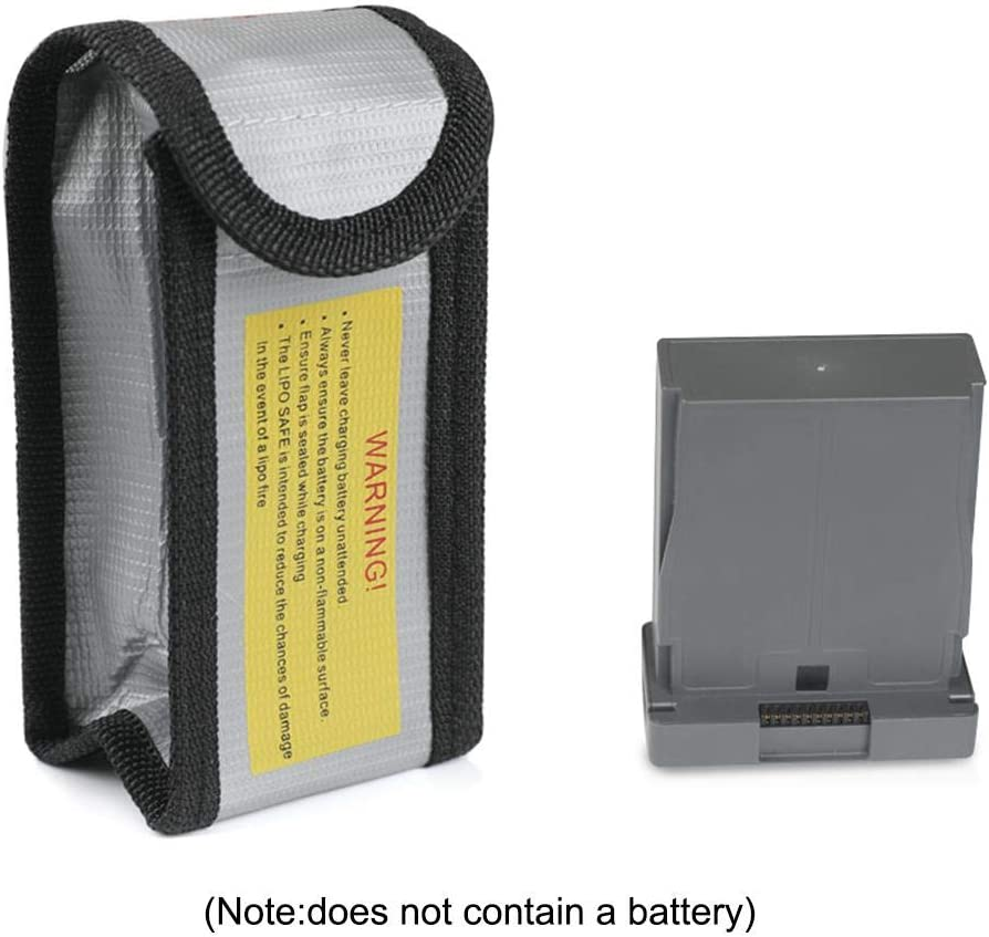 Ridecle - Bolsa de Transporte para dji RoboMaster S1 Roboter, batería de pedagogica (protección contra explosiones): Amazon.es: Hogar