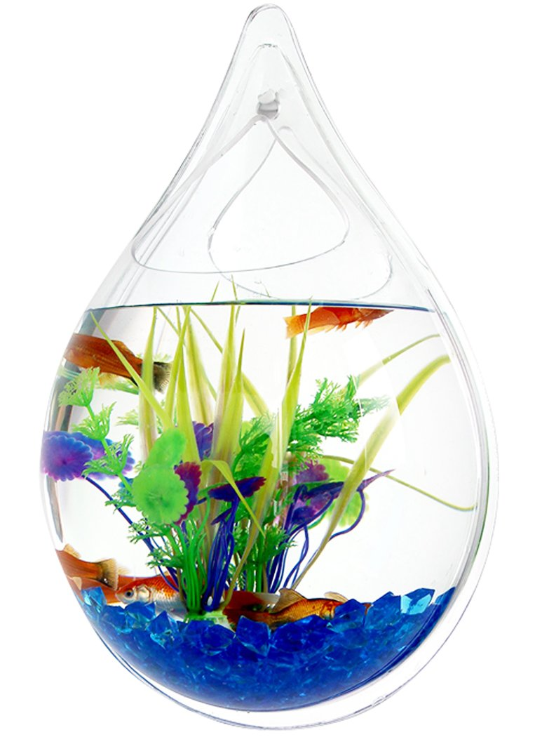 Outgeek Wall Hanging Fish Bubble Wall Plants Tank Water Drop Type Flower Pot 9.4in by Outgeek