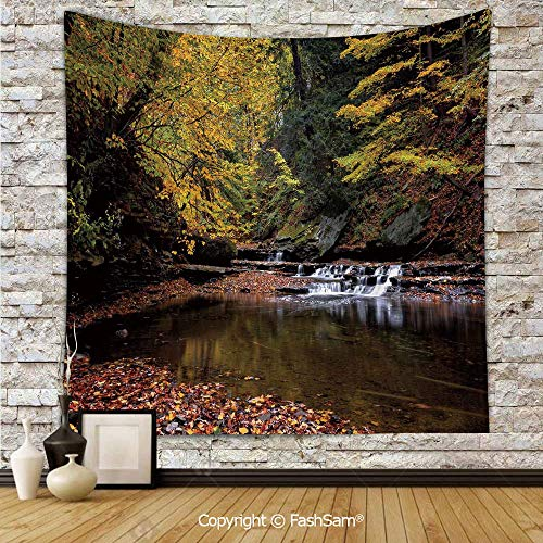 (Polyester Tapestry Wall Small Waterfall Brandywine Creek National Park Ohio Autumn Fallen Leaves Hanging Printed Home)