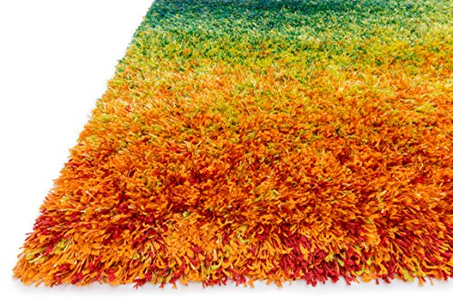 Loloi Barcelona Shag BS-01 Polypropylene And Viscose 7-Feet 7-Inch by 10-Feet 5-Inch Area Rug, Rainbow