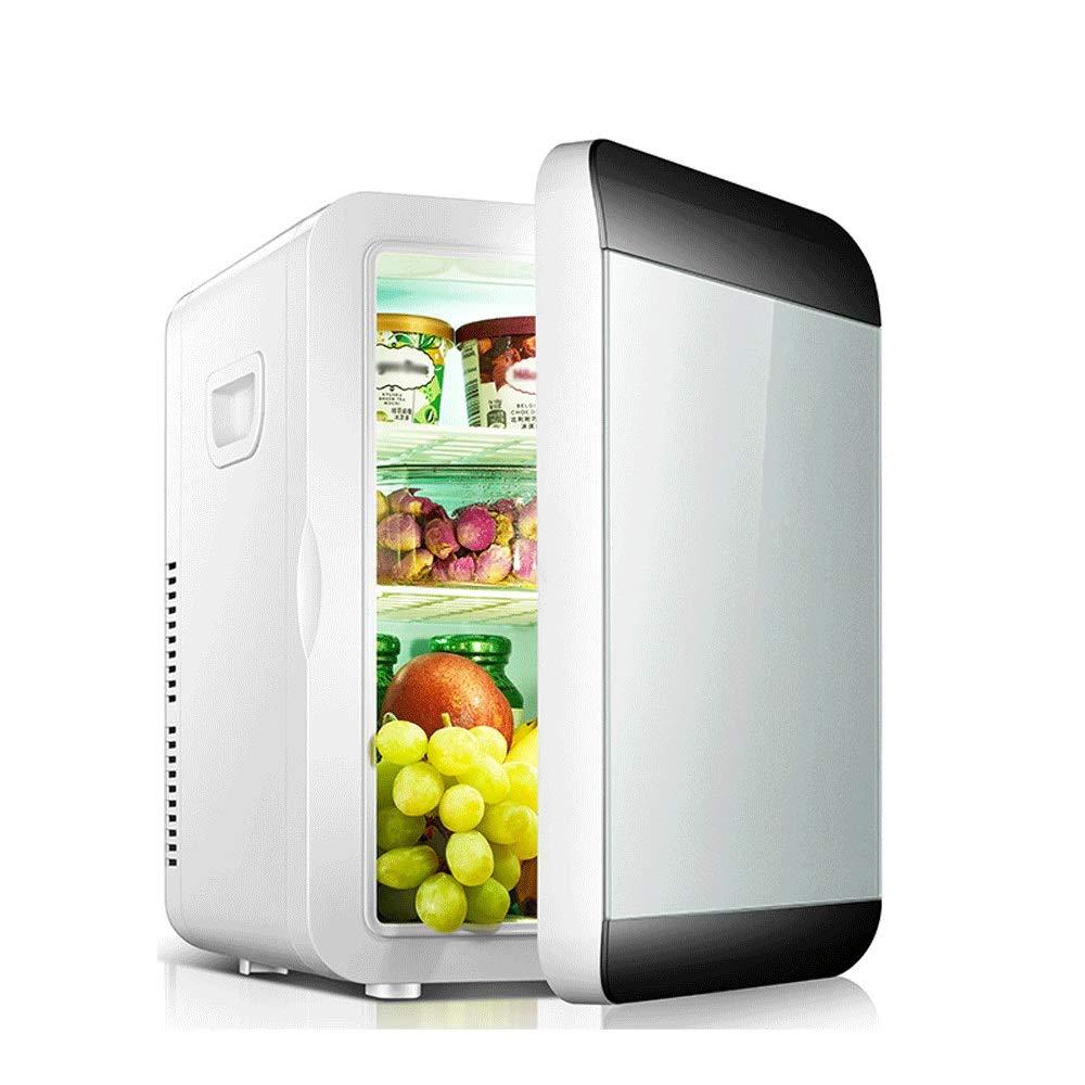 HKJhk 10L Small Refrigerator Mini Dormitory Small Household Car Refrigerator Car Home Dual-use Refrigeration Warm Box (Color : Black Silver)
