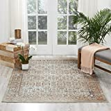 Cheap Kathy Ireland Worldwide MAI04 Rustic/Vintage Traditional Area Rug, 5'3″ x7'7, Taupe