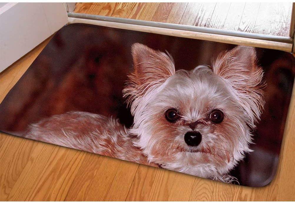 40*59cm Chenille Bathroom Carpet Mat Bedroom Floor Mat Rug Anti-slip Doormat Rug