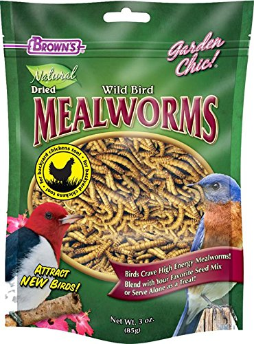 F M Browns Fixins Mealworms 3 Ounce product image