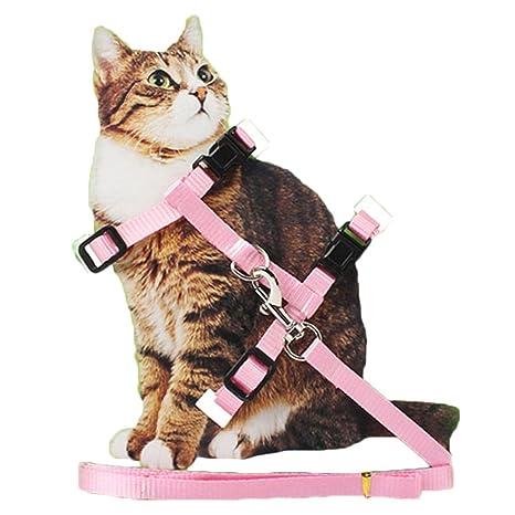Arnés de nailon ajustable para gato con correa para cachorro y correa para collar y correa