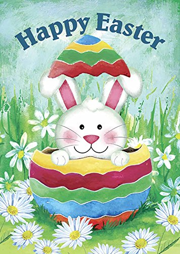 bunny egg decorative cute rabbit