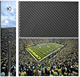 College Football Stadiums Xbox One Console Vinyl Decal Sticker Skin by Compass Litho