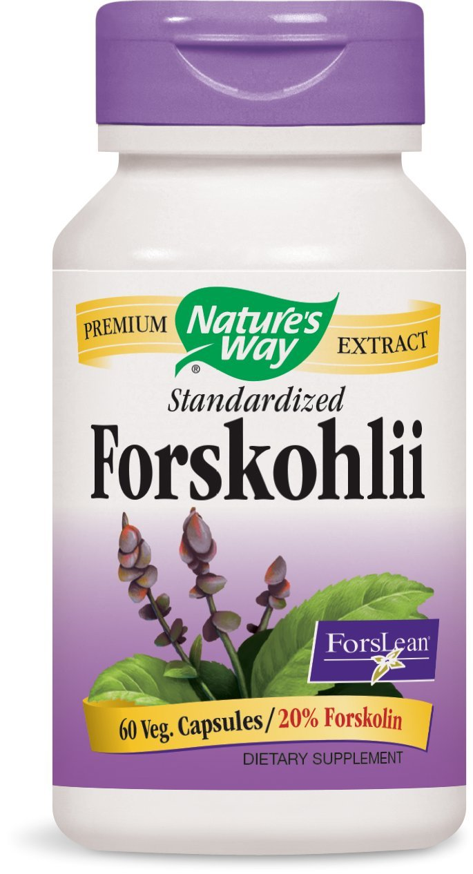 Nature's Way Forskohlii Extract Standardized V-Caps, 60 Count