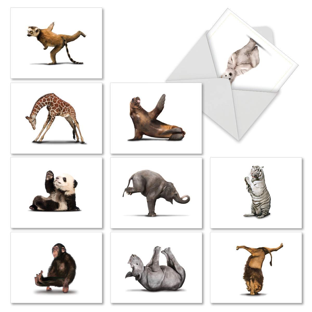 Tarjetas de felicitación navideña, zoo, yoga, MP6547Set de ...