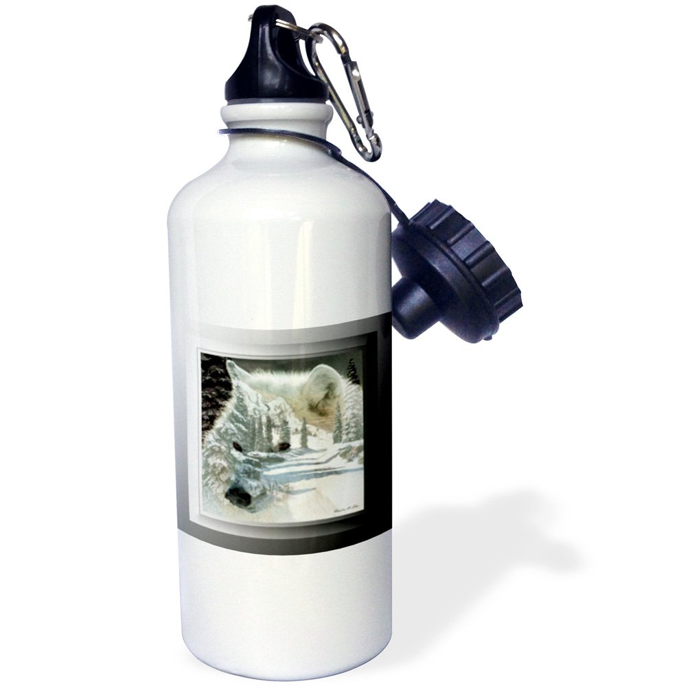 White 21 oz 3dRose wb/_26815/_1 South African Wild Dog Head Shot Sports Water Bottle
