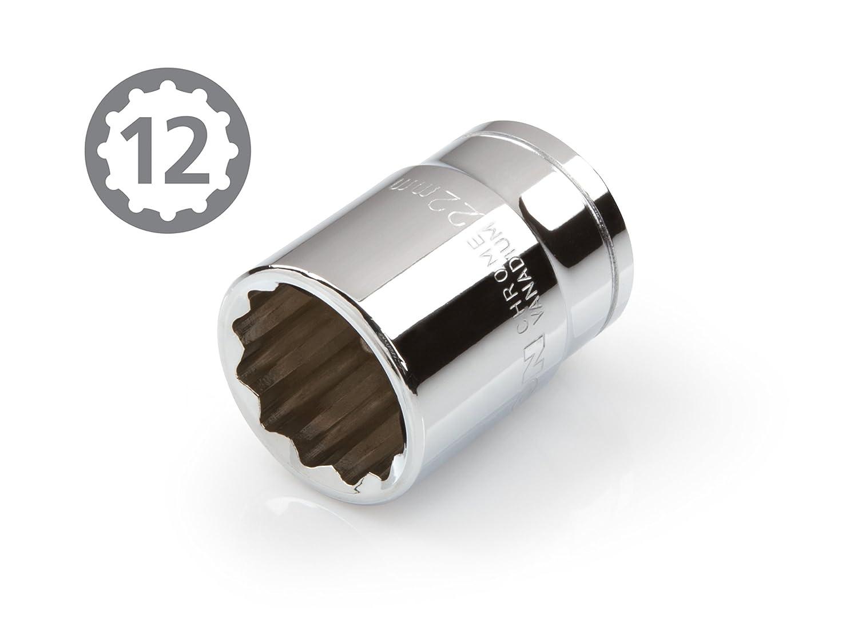 Cr-V TEKTON 14175 3//8-Inch Drive by 19 mm Shallow Socket 12-Point