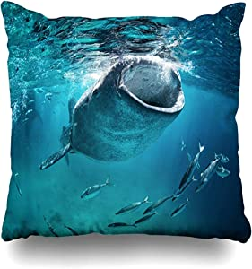 Throw Pillow Cover Square Cases 18x18 Inches Diving Blue Cebu Whale Shark Eating Fish Wildlife Nature Giant Mouth Open Tropical Design Zippered Cushion Home Decor Pillowcase