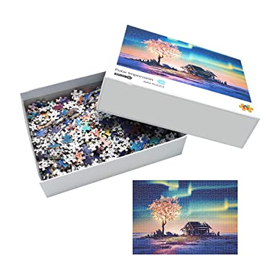 1000 Piece Polar Jigsaw Puzzles–Polar Impression Jigsaw Puzzle Series for Adults Kids: Toys & Games
