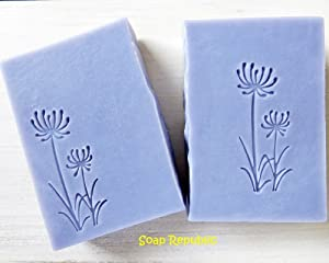 SoapRepublic 'Wild Flower Dandelions' 50x20mm Acrylic Soap Stamp/Cookie Stamp/Clay Stamp (20mm Thick)