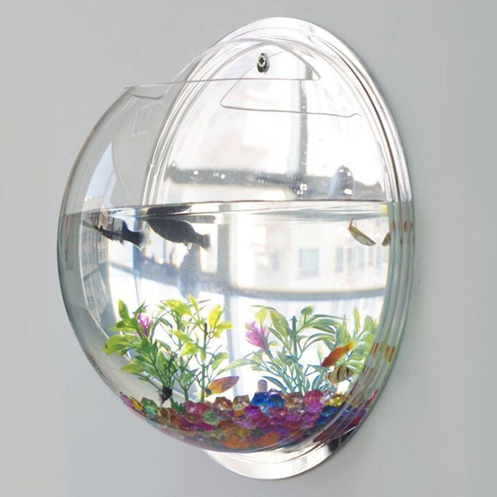 Amazon.com : Bellagione Wall Hanging Fish Bowl Fish Tank Water Plant ...